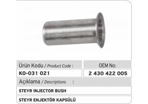 2430422005 Steyr Enjektör Pulu