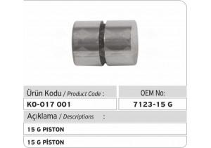 7123-15G Piston