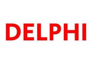 1-313 Delphi Pompa Elemanı